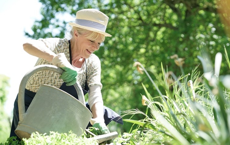 What's great about gardening